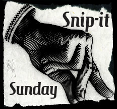 snip it